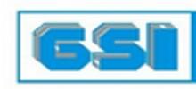 Guangzhou Shipyard International Co. Ltd.